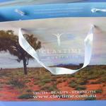 Custom printed paperboard bag 25x35hx10cm image